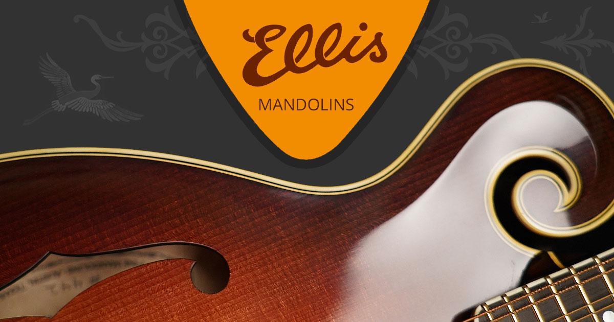 Ellis Mandolins : Artists : CJ Lewandowski